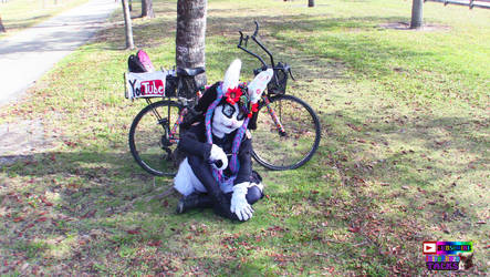 :) sweet bike, (ZOE the Cop 6)- INTROPHAZE