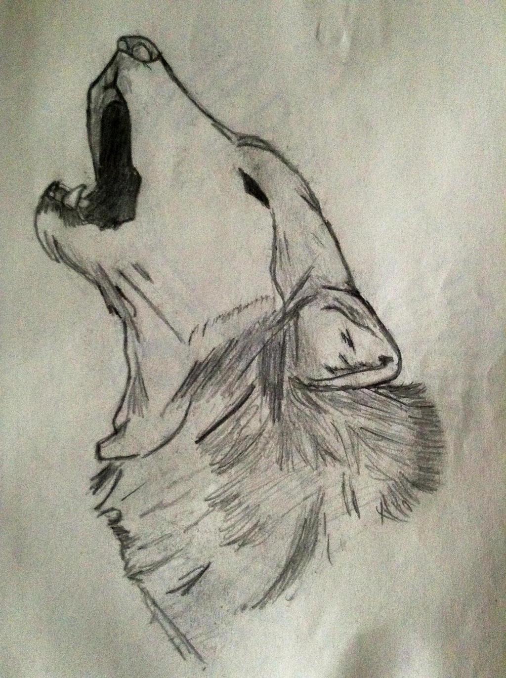 Howling Wolf Head Sketch by bloodwolf-34 on DeviantArt