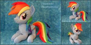 Rainbow Dash by BlueDragonflyPlush