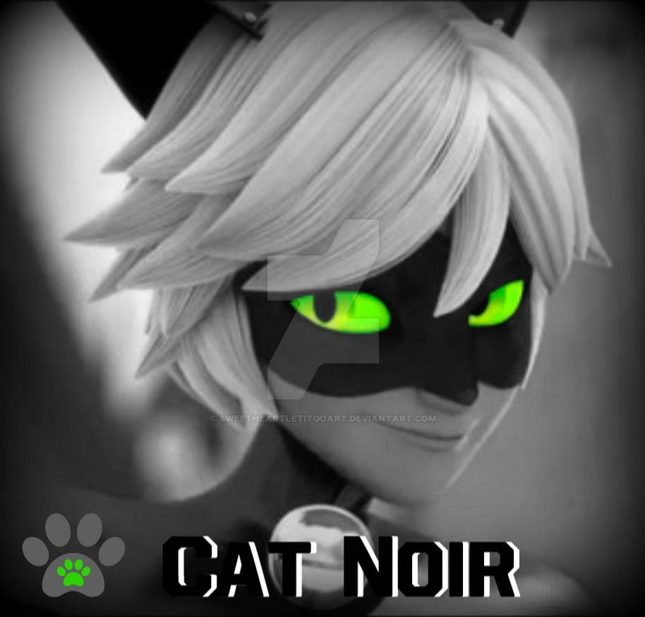 Cat Noir Icon by SweetheartLetItGoArt