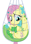 Fluttershy Caught in a Net