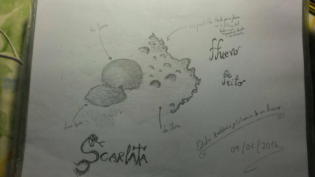 egg by Escarlata4166