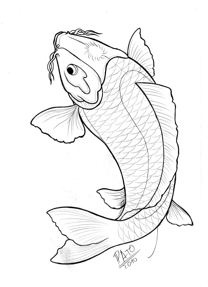 Line Drawing Koi Fish : Koi by patoink on deviantart