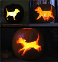 Beagle Pumpkins by TigerSpuds