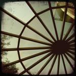 Through the Dome