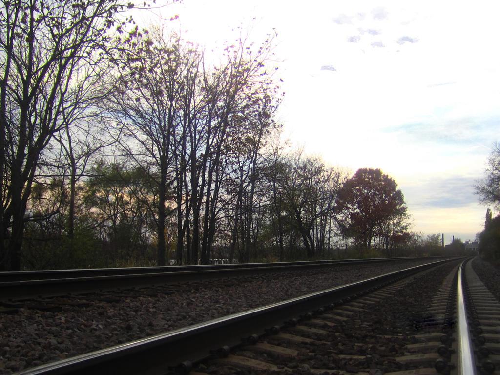 Railroad by cottoncandysheep