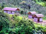 Huts by pmspratik