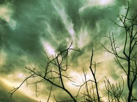 Up in the Sky by pmspratik