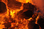 Firewood_Stock_371 by xENDing