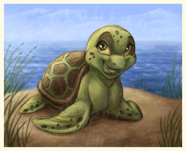 Sasha The Turtle By DolphyDolphiana On DeviantArt