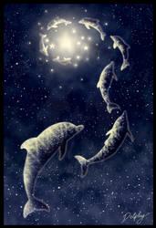 Follow the Stars by DolphyDolphiana
