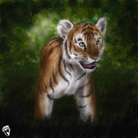 Tiger cub by DolphyDolphiana