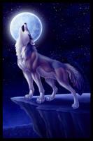 Howl at the Moon by DolphyDolphiana