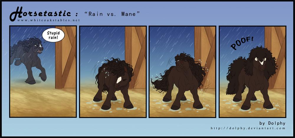Horsetastic - Rain vs. Mane by DolphyDolphiana