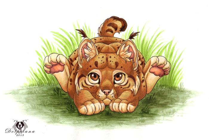 Lynx Cub by DolphyDolphiana
