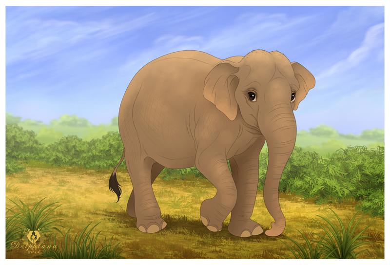 Indian Elephant by DolphyDolphiana
