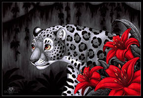 Jungle Lilies by DolphyDolphiana