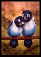 Birdie Love by DolphyDolphiana