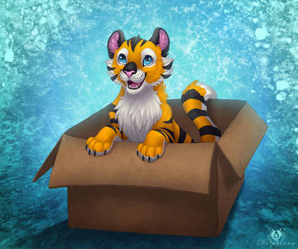 'I like my box!' :3