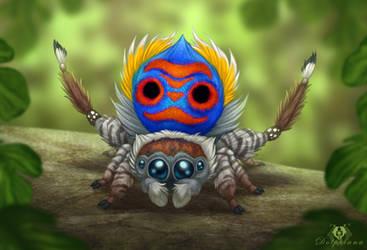 Peacock Spider by DolphyDolphiana