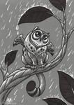 Owlkitty