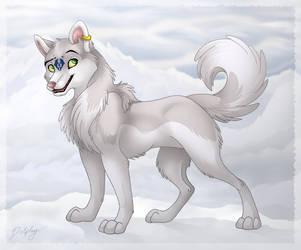 Dolphy Husky by DolphyDolphiana