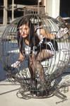 Mew cage