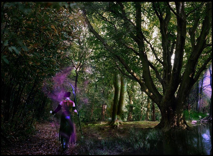 Morrigan - Never follow me by Achico-Xion
