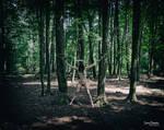 between the trees by S0ulTak3r
