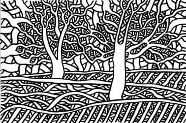 Trees by matt-mcdonnell