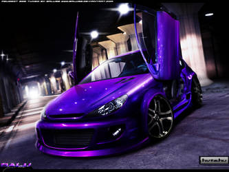 Peugeot 206 Widebody by Balu32