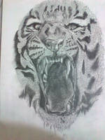 tiger by 16sweety