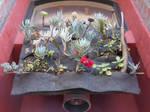 Cannery Door Flowers