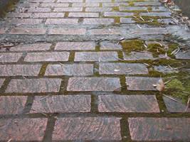 Bricks After Rain by discoinferno84