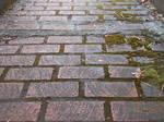 Bricks After Rain