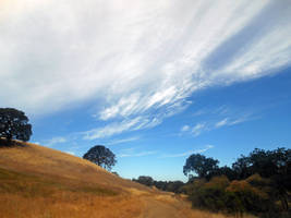 Hiking On Mount Diablo by discoinferno84