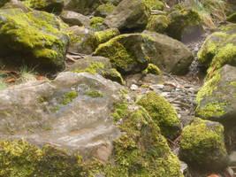 Mossy Rocks by discoinferno84