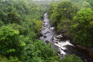 Umauma River, Hawaii by discoinferno84