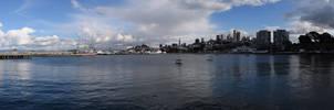 Municipal Pier Panorama