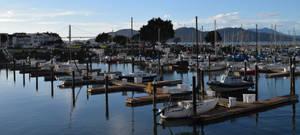San Francisco's Marina Yacht Harbor by discoinferno84