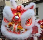 Chinese Lion Blur
