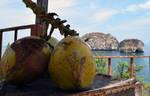 Los Arcos Coconuts