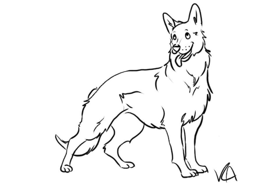 German Shepherd Line Art By RandomArtTypePerson