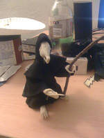 Death of Rats - Discworld by veririaa