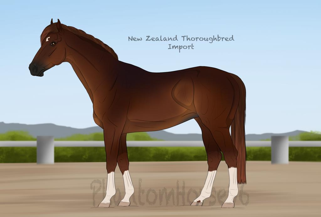 NZTB - Import #48 Custom by PhantomHorse96