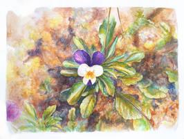 Flower - 5 by LauraPex