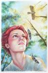 Lady Sparrowhawk