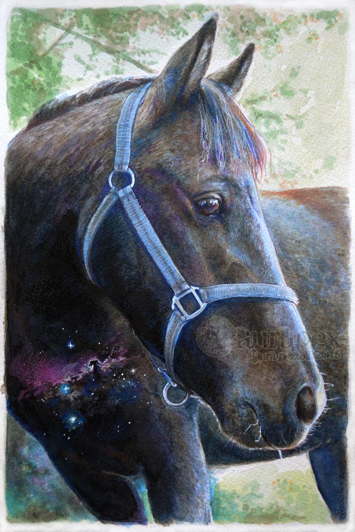 Nebula horse by LauraPex