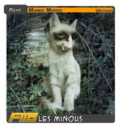 Les Minous - La Meme
