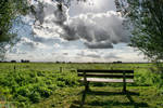 bench in the Netherlands